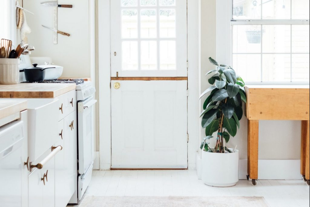 Houseplant in kitchen